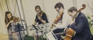 A Manchester wedding string quartet play in a marquee during the drinks reception.